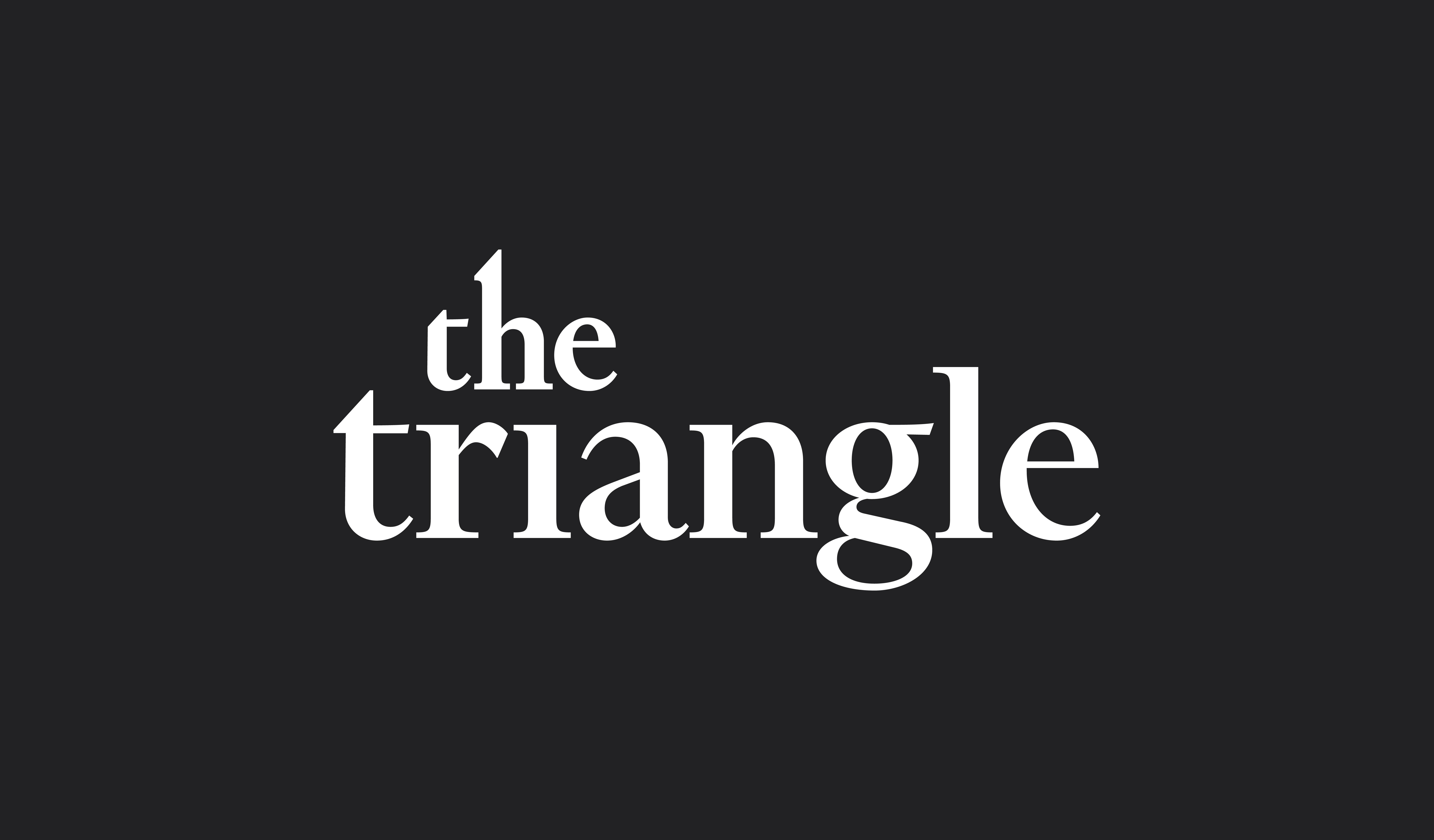 LK_2020_Site_Triangle_Case-02-1